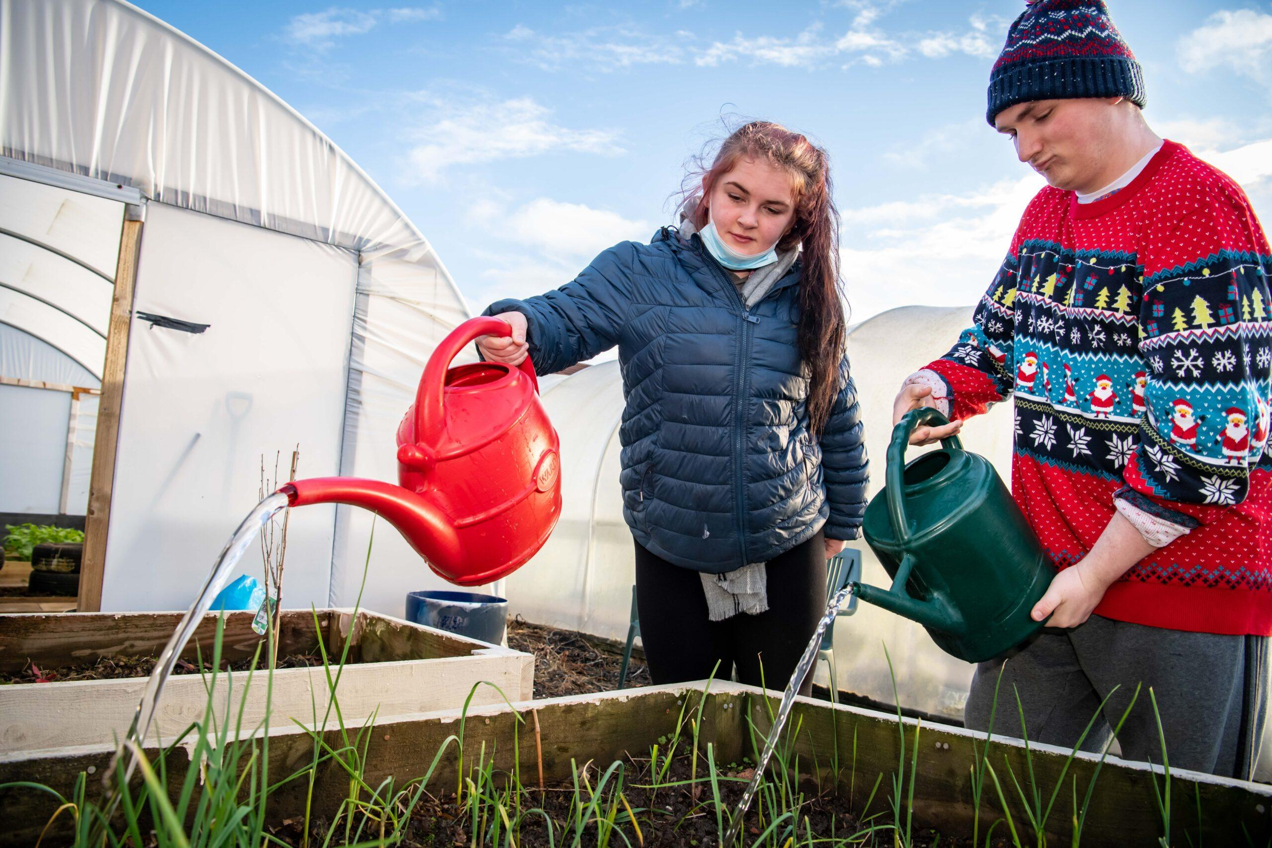 Young people watering plans in allotment
